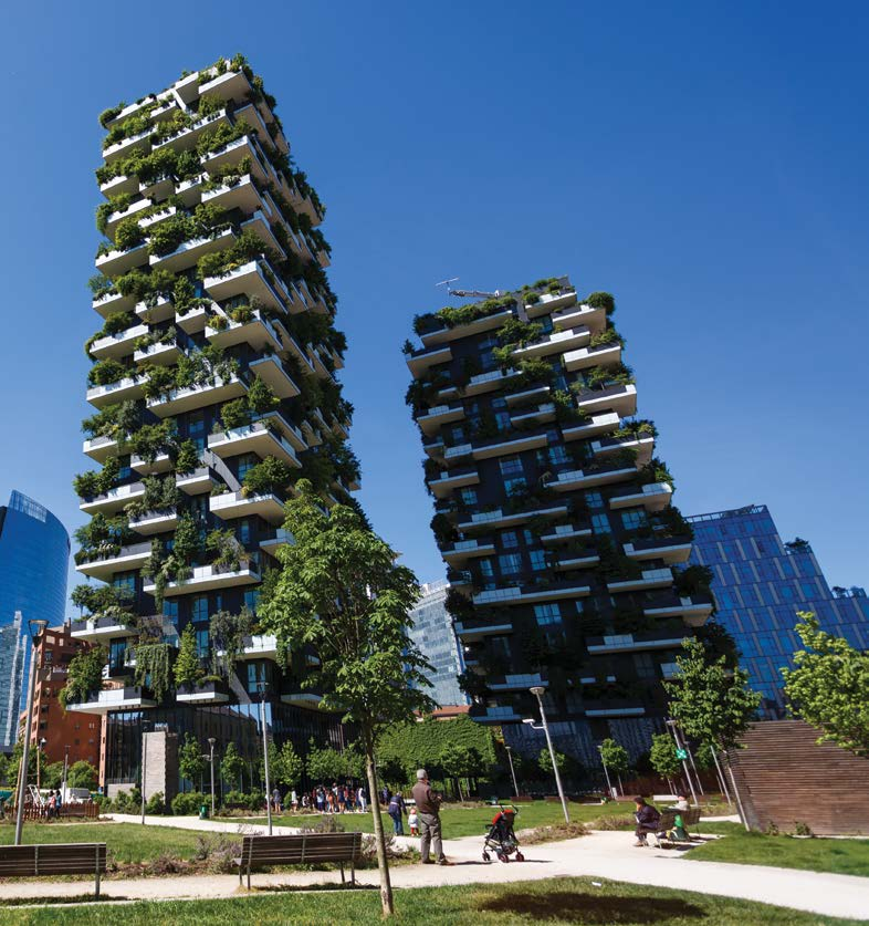 Vertical forest Milan Collect and connect